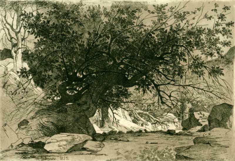 Taras Shevchenko. Mangyshlak garden