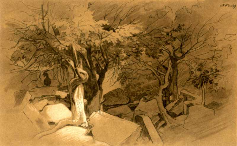 Taras Shevchenko. Mangyshlak garden (4)