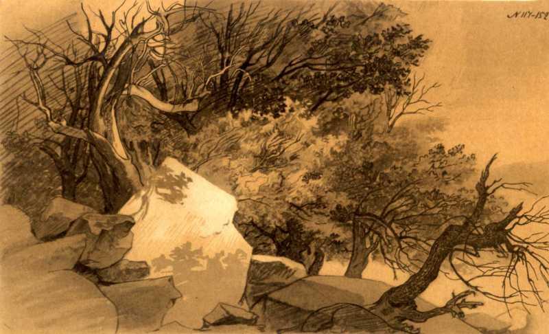 Taras Shevchenko. Mangyshlak garden (7)