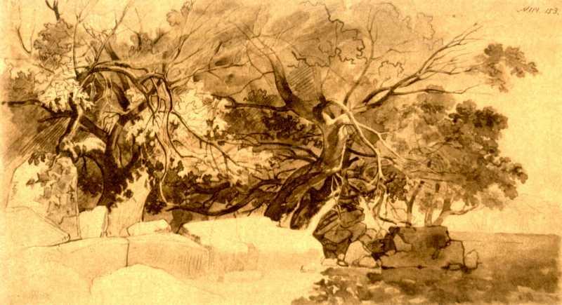 Taras Shevchenko. Mangyshlak garden (8)